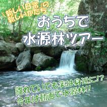 アイコン_水源林2